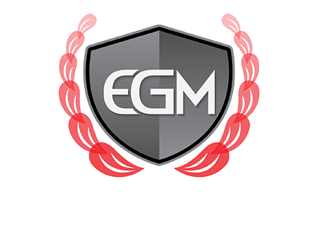 Euro Garage Melbourne Trusted Mechanics For European Vehicles